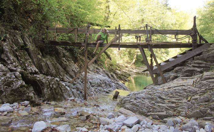 Деревянный мост через Бешенку